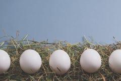 Biali jajka kłaść w rzędzie na sianie Zdjęcia Royalty Free