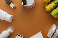 Biali kosmetyczni zieleń liście na koloru tle i produkty Zdjęcia Royalty Free