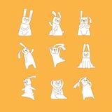 Biali króliki na pomarańczowym tle Fotografia Stock