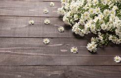 Biali krajaczy kwiaty są na drewnianym tle Obrazy Stock