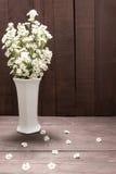 Biali krajaczy kwiaty są w wazie na drewnianym tle Zdjęcia Stock