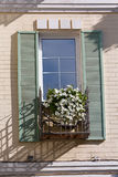 Biali kwiaty na okno w klasyku projektują obraz stock
