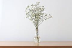 Biali kwiaty na stole Zdjęcia Royalty Free