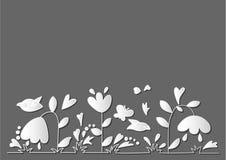 Biali kwiaty na szarym tle Obraz Royalty Free