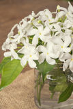 Biali kwiaty w szklanej butelce Zdjęcia Royalty Free