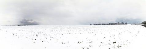 Biali lodowaci drzewa w śnieg zakrywającym krajobrazie Fotografia Royalty Free