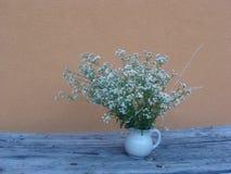 Biali mali kwiaty na antycznym drewnianym stole obraz stock