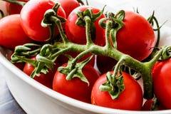 biali misek wiśnie pomidorów Zdjęcia Royalty Free