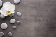 Biali orchidei i zdroju kamienie na popielatym tle zdjęcia stock
