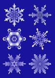 biali płatki śniegu ilustracja wektor