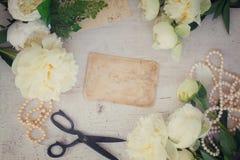 Biali peonia kwiaty Obraz Royalty Free