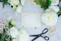 Biali peonia kwiaty Zdjęcia Royalty Free