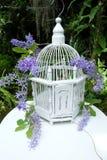 Biali Ptasiej klatki i purpur kwiaty Zdjęcie Stock