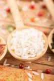 Biali ryż i pikantność obraz stock