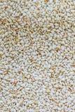 Biali sezamowi ziarna. Zdjęcia Royalty Free