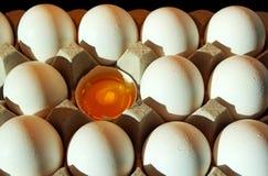 Biali skorup jajka, jajko, jedzenie Zdjęcia Stock