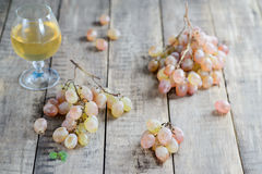 Biali stołowi winogrona na nieociosanym tle Fotografia Stock