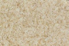 Biali surowi dłudzy ryż Obrazy Stock