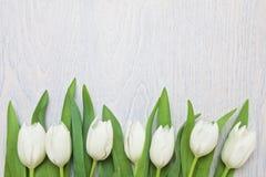 Biali tulipany na białym drewnianym tle Fotografia Royalty Free