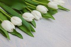 Biali tulipany na białym drewnianym tle Zdjęcie Stock