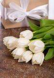 Biali tulipany na drewnianym tle Obraz Stock