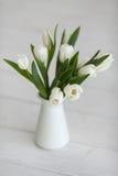 Biali tulipany w wazie Obraz Stock