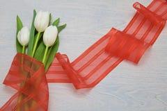 Biali tulipany z czerwonym faborkiem na drewnianym tle i opróżniają przestrzeń dla teksta Zdjęcia Stock