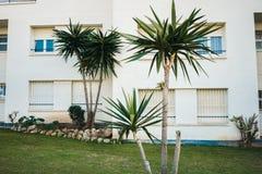 Biali utrzymanie domy zdjęcie royalty free