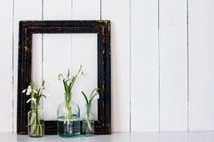 Biali wiosna kwiaty Zdjęcia Royalty Free