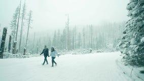 BIALKA TATRZANSKA, POLOGNE - 4 FÉVRIER 2018 Couplez la marche dans la forêt de montagne dans la neige Images stock