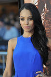 Bianca Lawson Royalty Free Stock Photography