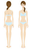 Biancheria intima, parte anteriore e parte posteriore di usura di donne illustrazione vettoriale