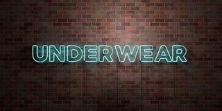 BIANCHERIA INTIMA - segno fluorescente del tubo al neon su muratura - vista frontale - 3D ha reso l'immagine di riserva libera de Immagini Stock