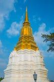 Bianco con il cielo blu smussato della scrofa giovane Ayutthaya, Tailandia Fotografie Stock