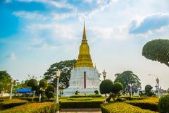 Bianco con il cielo blu smussato della scrofa giovane Ayutthaya, Tailandia Immagine Stock Libera da Diritti