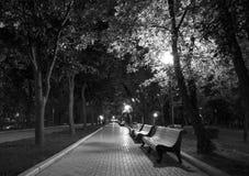 Bianco del nero del parco di notte fotografia stock