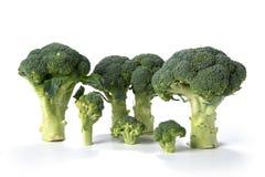 Bianco del sfondo del su del verdi del bróculi Fotos de archivo