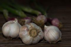 Bianco dell'aglio su vecchio fondo di legno Fotografie Stock