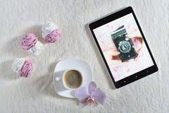 Bianco delle caramelle gommosa e molle e rosa fatti a mano Immagine Stock Libera da Diritti