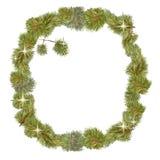Bianco di natale della struttura del pino Immagini Stock Libere da Diritti