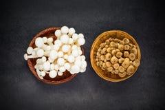 Bianco e funghi di Brown Shimeji Fotografia Stock