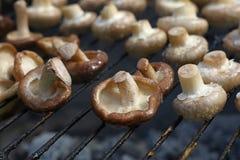 Bianco e funghi di shiitake sulla griglia Immagine Stock Libera da Diritti