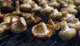 Bianco e funghi di shiitake sulla griglia Fotografia Stock