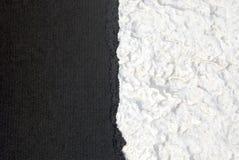 In bianco e nero Fotografie Stock