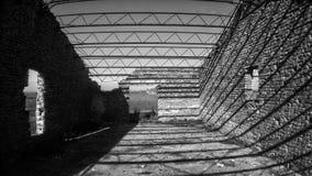 1 in bianco e nero Fotografia Stock