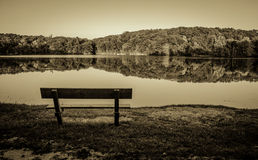In bianco e nero Lakeshore Fotografia Stock Libera da Diritti