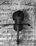 In bianco e nero Violine Fotografia Stock