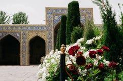 Bianco e rose rosse su un bello cortile iraniano - fuoco selettivo sulla priorità alta Fotografie Stock