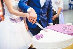 Bianco e Violet Cake Immagine Stock