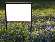 In bianco firmi dentro i Bluebonnets Immagine Stock Libera da Diritti